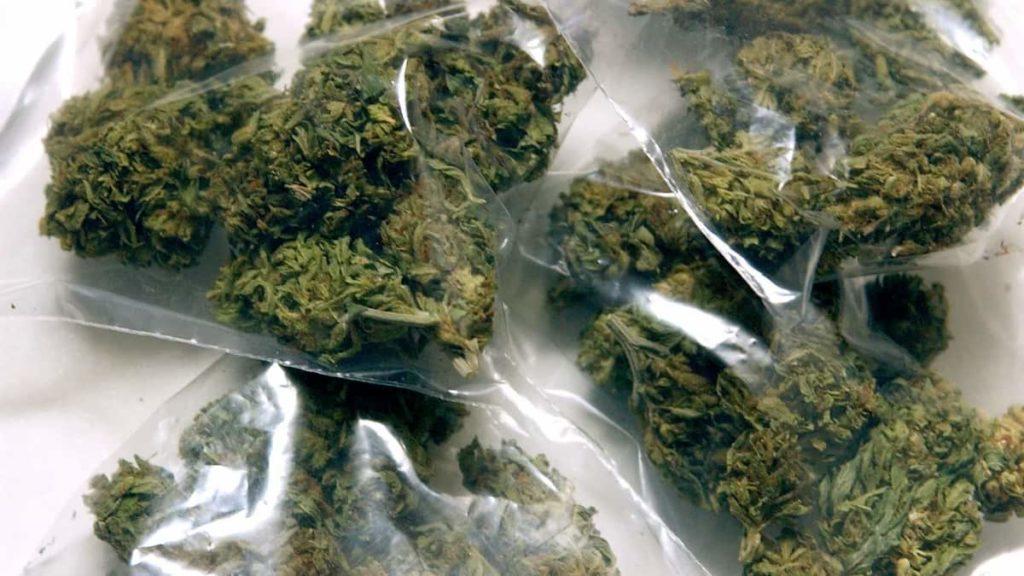 Avoid Cannabis Scams