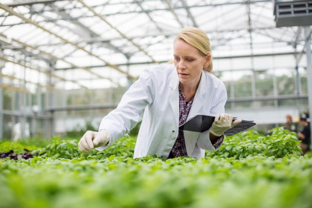 Environmental Science Career Opportunities